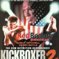 A Look Back At The four Kickboxer Sequels!